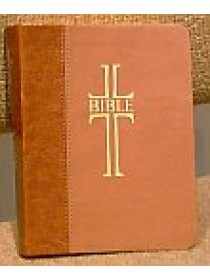 Bible ČEP kapesní v kůži + DT (1121)